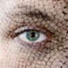 Cracked skin, closeup of green eye.
