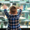 Back view of little boy looking at cakes in showcase